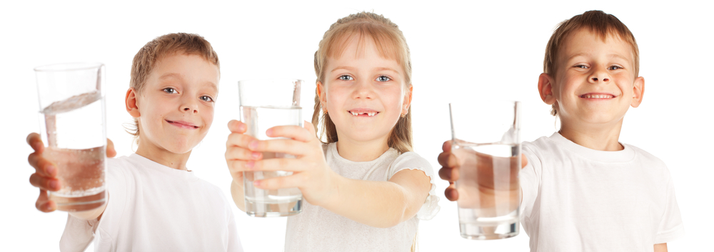 No-Salt Water Softeners For The Whole House And Family